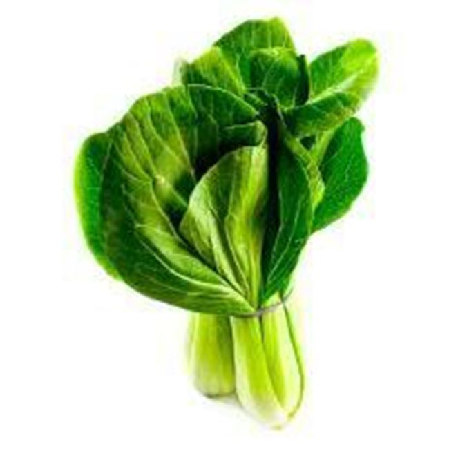 Picture of BOK-CHOY BABY