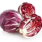 Picture of LETTUCE RADICCHIO RED